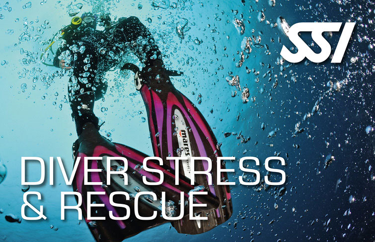 Theorie Stress & Rescue